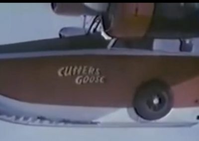 Cutters Goose